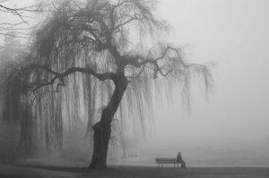 Ensomhet alene