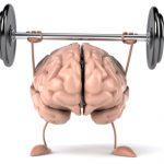 Hjernen som en muskel