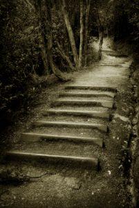 Mystisk_trapp