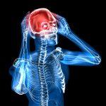 Schizofreni og hjernen