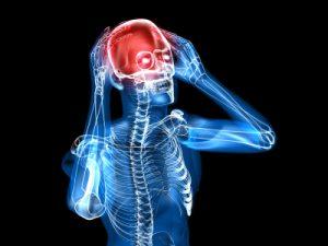 Schizfreni & hjernen