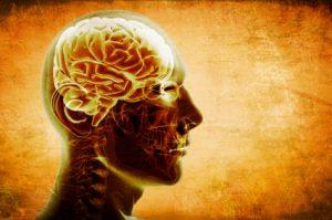 hjernebolger meditasjon